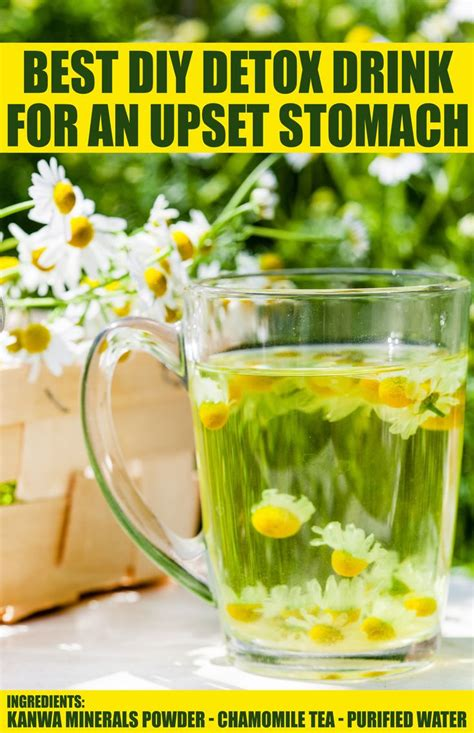 Kanwa Minerals Detox by Best 25 Foods For Upset Stomach Ideas On Food