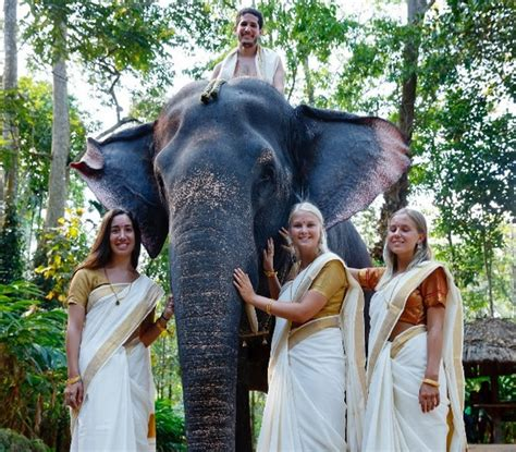 How To Do Draping Complete List Of 70 Best Things To Do In Kerala With