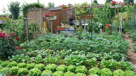 potager de jardin conseils en jardinage astuces et tutoriels pour le jardin