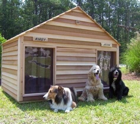 cucce interne per cani cucce per cani in legno
