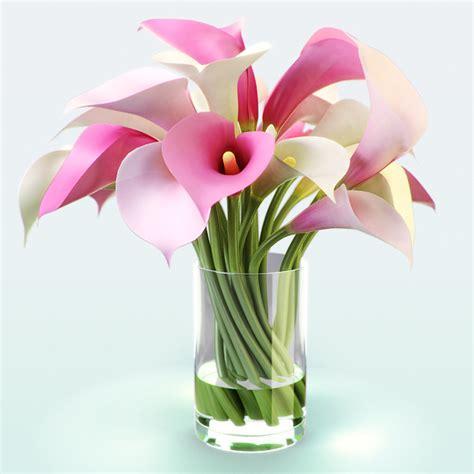 calla lilies colors 3d calla flowers color model