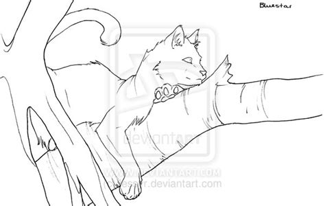 warrior cats bluestar free coloring pages