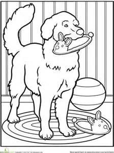 golden retriever coloring pages pet worksheet education