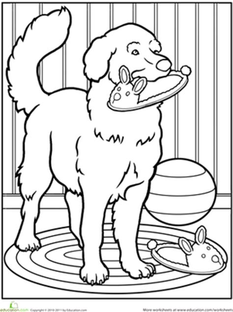 pet dog worksheet education com