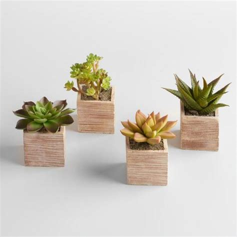 mini succulent planters mini succulent pots set of 4 world market
