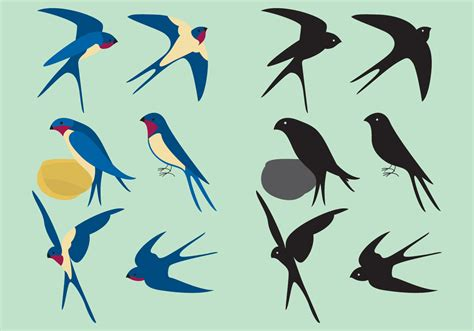 colorful swallows   vectors clipart