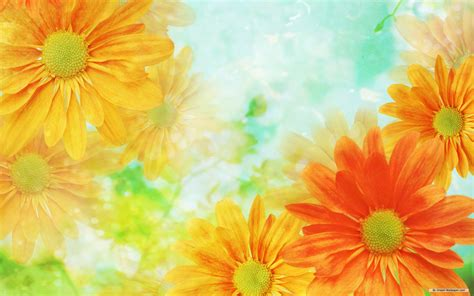 background wallpaper of flowers flowers background flower wallpaper images of flower