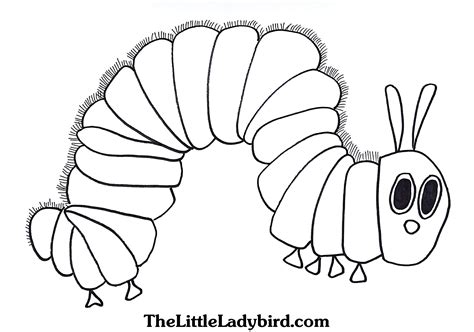 92 coloring page very hungry caterpillar very hungry