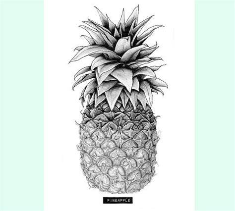 pineapple a4 print food amp kitchen art tattoo design
