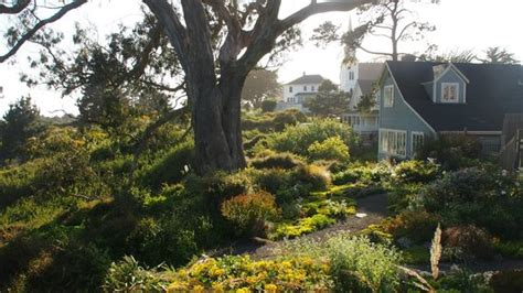 Alegria Oceanfront Inn And Cottages by Fruit Served At Breakfast Quot 1st Course Quot Picture Of