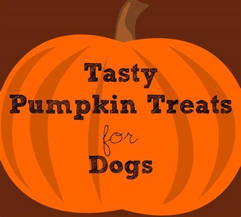 pumpkin treats for dogs pumpkin treats for dogs this pug