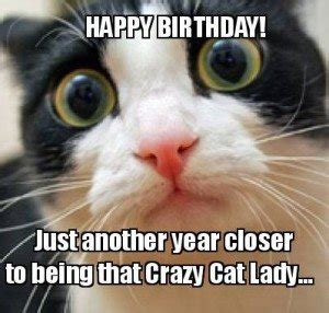 Happy Birthday Cat Meme - funny happy birthday cat meme 2happybirthday