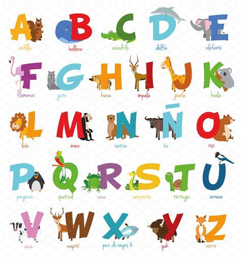 libro the illustrated a z of spanish animal alphabet vector illustrations creative market