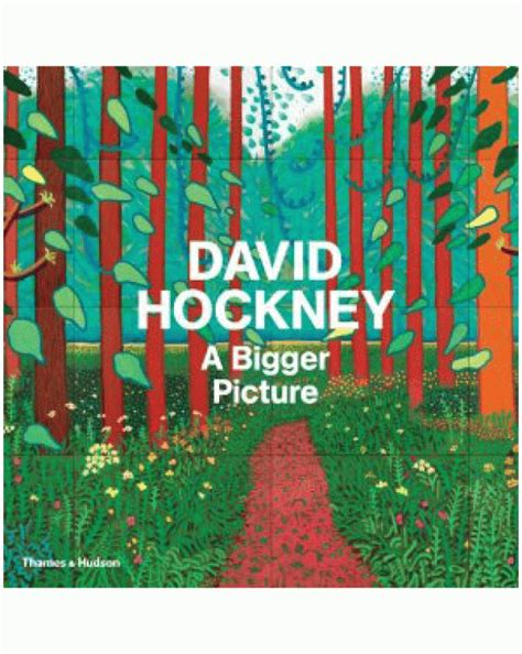 david hockney a bigger picture book a bigger picture david hockney hardback pallant bookshop