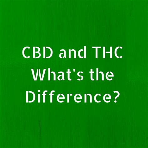 what s what s the difference between thc and cbd greenito