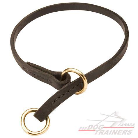 choke collar for dogs buy leather choke collar supplies canada