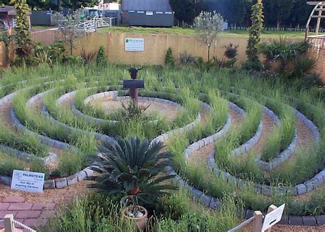 lavender maze the lavender labyrinth garden haywood landscapes ltd