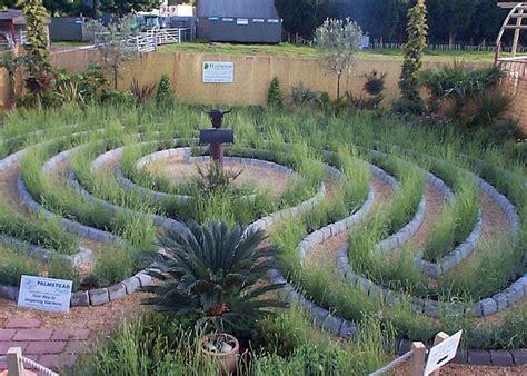 lavender maze the lavender labyrinth garden haywood landscapes ltd