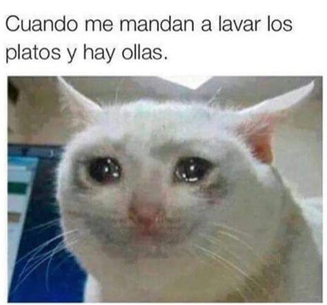 imagenes divertidas llorando chistes and v 237 deos on pinterest