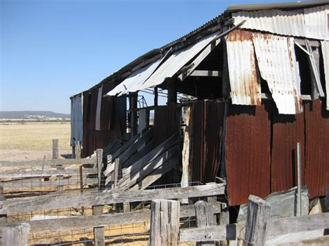 Shering Shed by Beermullah 187 Shearing Shed History