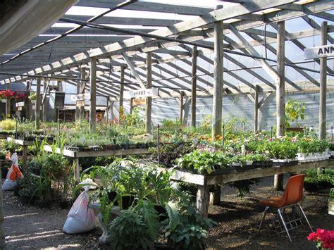 barton springs nursery 52 photos garden centres