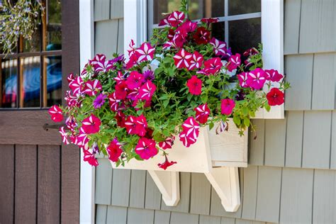 Flower Box Flower Boxes For Your The Barn Yard Great