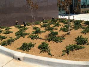 decomposed granite screenings landscape supply
