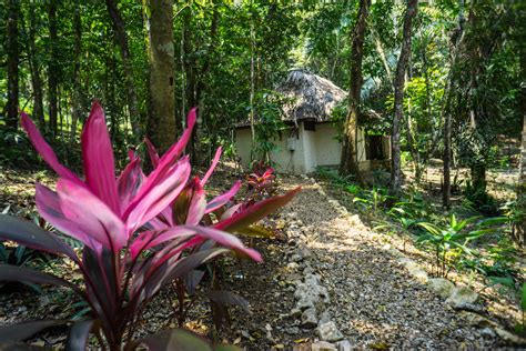 table rock jungle lodge table rock jungle lodge the most sustainable eco lodge in