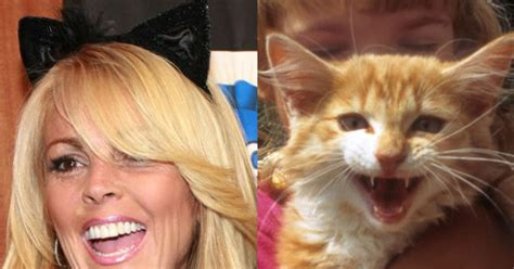 Dina Lohan Is All Rainbows And Animals by And Their Animal Look A Likes Slide 49 Ny