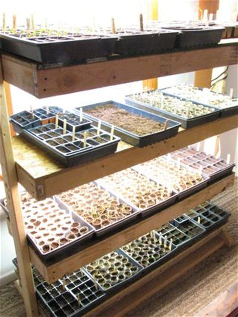 Shelf Of Seeds by Adventures In Eco Living Country Living