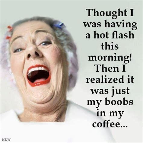 hot flashes funny quotes hot flash calm fun and easy to get along with pinterest