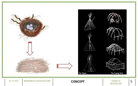 design concept nature architecture biomimetic architecture