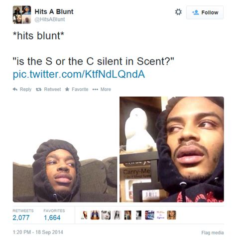 Blunt Memes - the hits blunt meme the deepest thoughts you will read