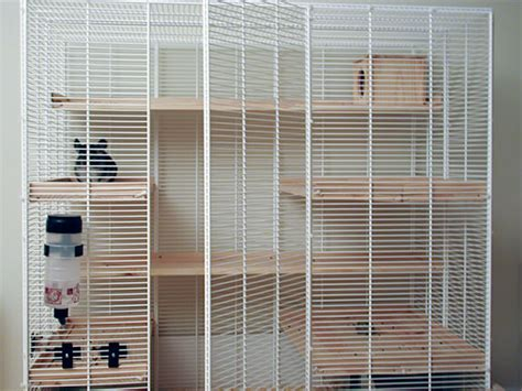 Kandang Kucing Well Cage ferret cage plans house plans home designs