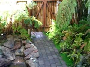 Small fern and stream garden youtube