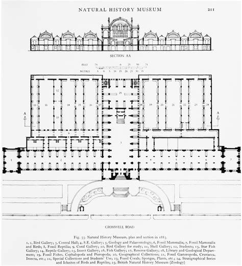 museum floor plan requirements 100 museum floor plan requirements peabody essex