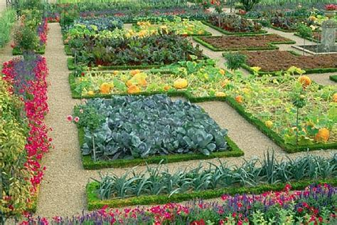 Vegetable Garden Layouts Gardening Tips To Grow Organic Vegetables In Your Garden Diy Home Improvement Tips Ideas