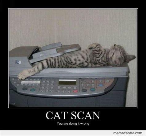 Scanners Meme - cat scan by ben meme center
