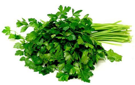 fresh italian parsley buy online at persian basket