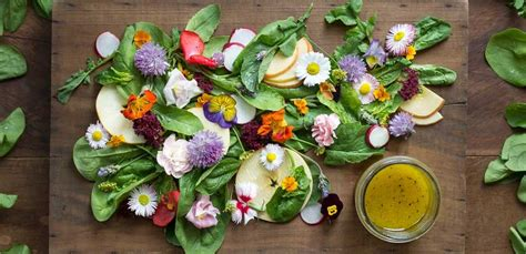 ricette con fiori commestibili fiori commestibili ecco i pi 249 buoni da provare nelle