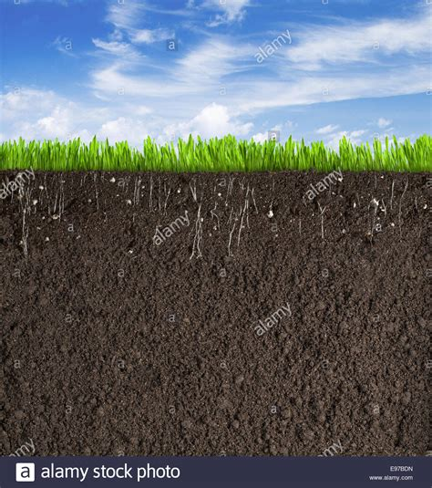 soil section soil or dirt section with grass under sky as background