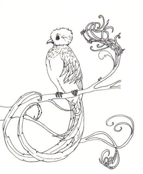 quetzal bird coloring page quetzal most beautiful by otterling on deviantart