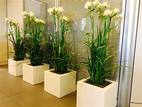 piante interne piante artificiali di ogni tipo sia interne che esterne