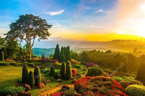 colorful hill beautiful garden of colorful flowers on hill with