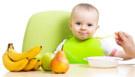 Introducing semi solid baby food diet to your infant the champa tree