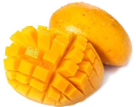 aliexpress buy 5pcs bag mango bonsai seeds fruit tree seed mango tree plant for