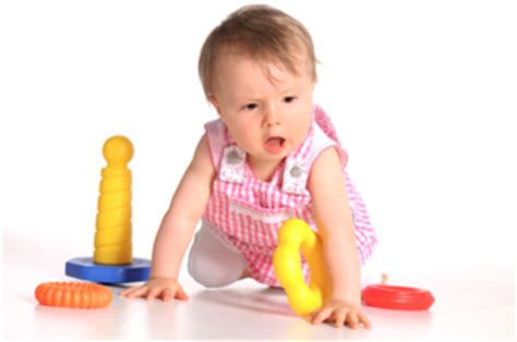 infant schedule   optimal learning schools and centers