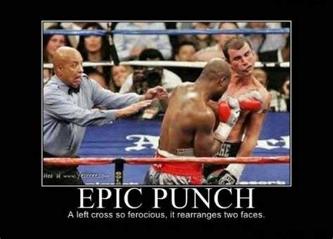 Funny Boxing Memes - epic punch joke overflow joke archive