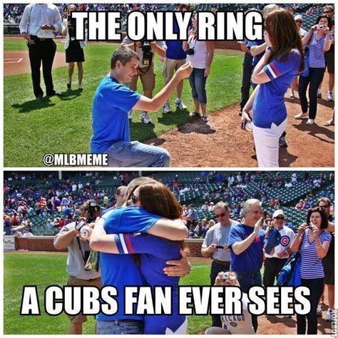 Cubs Fan Meme - chicago cubs meme tkcsports