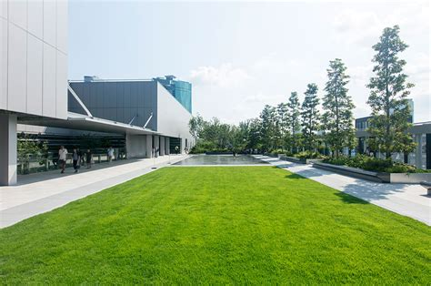 discover  rooftop garden  living walls  ginza  global blue